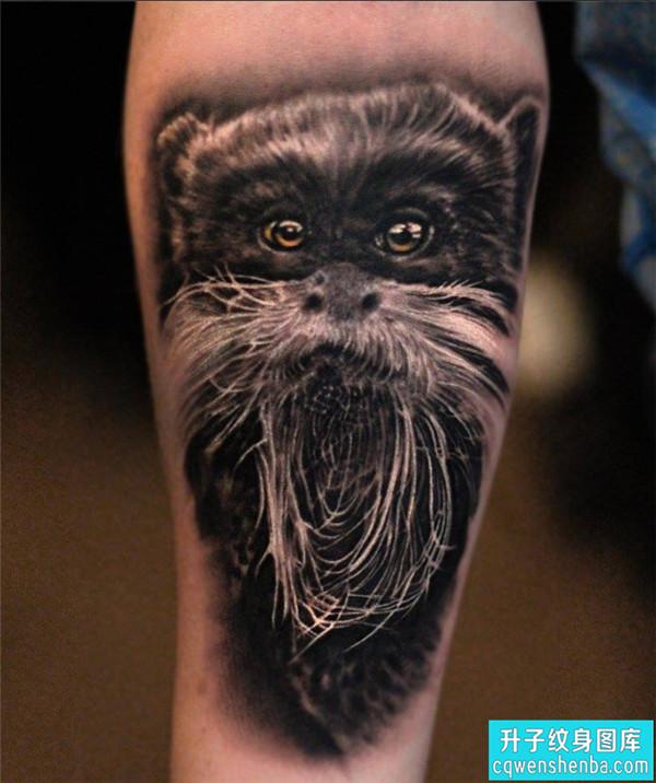 手臂动物写实纹身图片大全 重庆哪里有纹身店