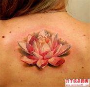 美女后背写实荷花纹身图案 沙坪坝纹身