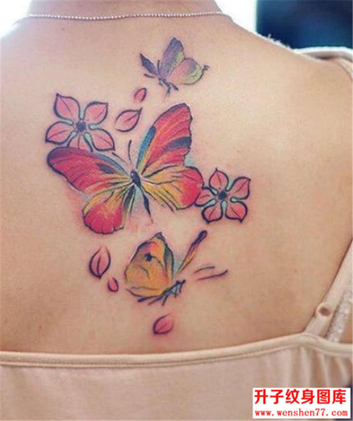美女后背花蝴蝶纹身图片
