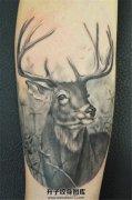 黑灰色写实鹿头纹身欧美