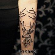 黑灰色大角鹿纹身