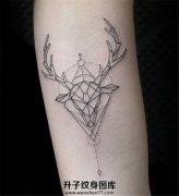 小清新线条鹿纹身