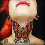 色彩艳丽的颈部大蝴蝶