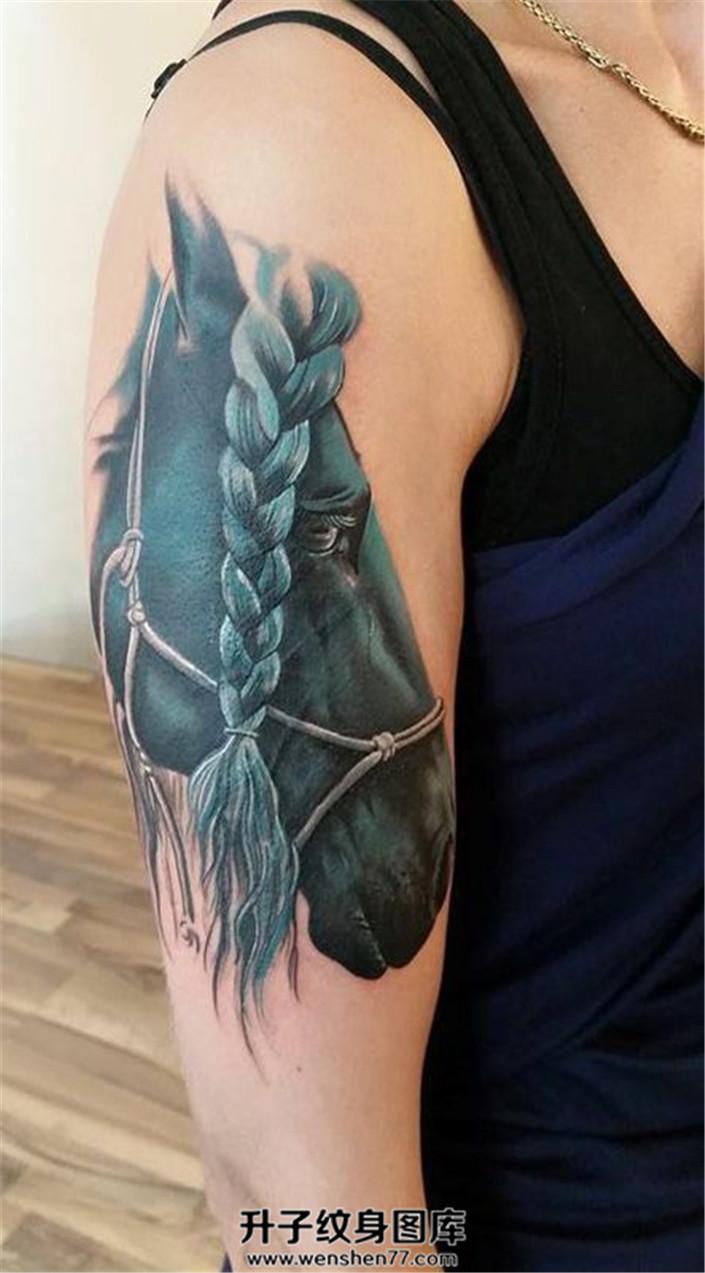 女性大臂写实马纹身图案图片