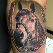 一张俯视你的马纹身