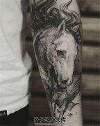 男性小臂马纹身针痕非常棒
