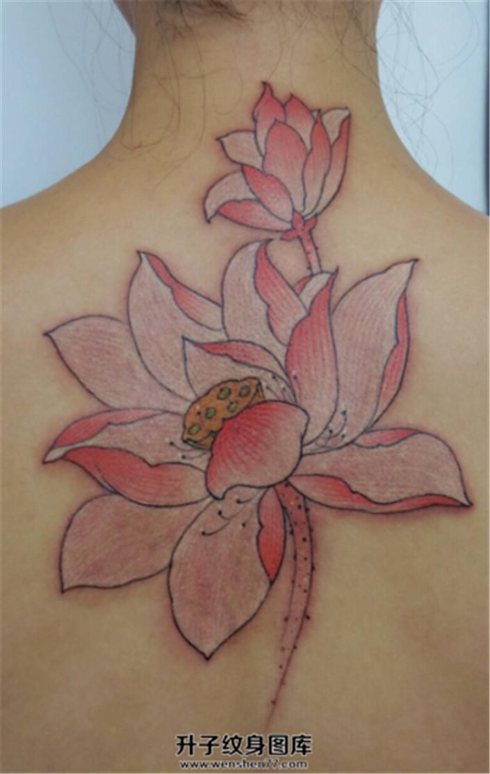女性背部清新的荷花纹身