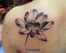 后肩部的荷花纹身图案