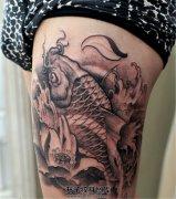 大腿黑灰色传统鲤鱼与荷花