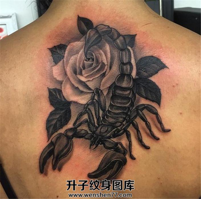 女生背部蝎子与玫瑰花纹身