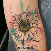 手臂泼墨小雏菊纹身