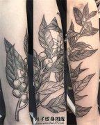女性小臂植物纹身