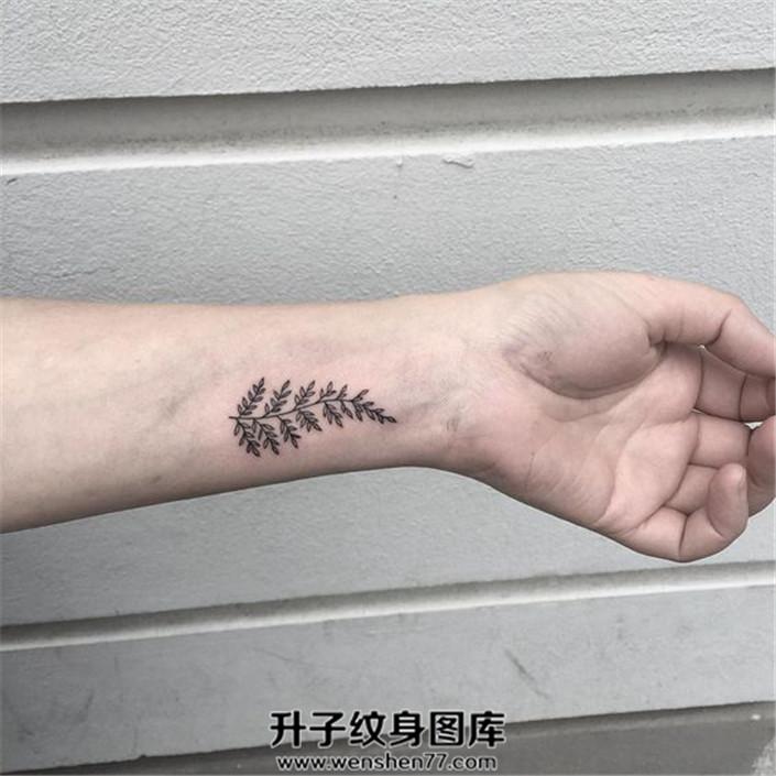 女生手腕小清新植物纹身图案