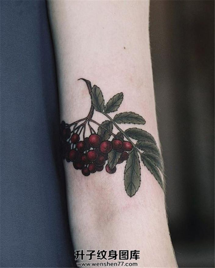 女生手臂上的植物纹身