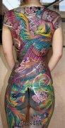 女性日式传统彩色满背凤凰纹身