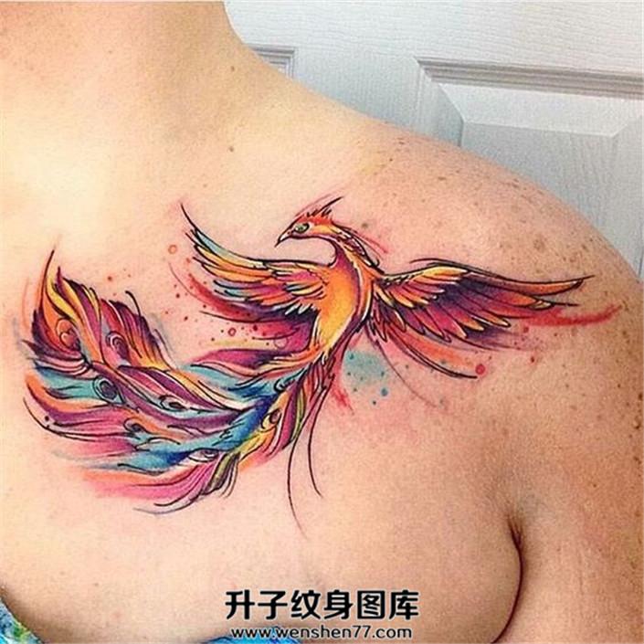 女性胸口彩色凤凰纹身