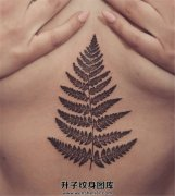 女性胸下植物叶子纹身