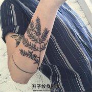 女性小臂植物和单线条环纹身