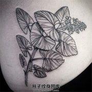 女性腰部植物纹身图案