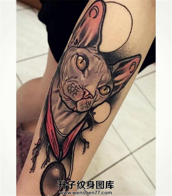 女性小臂new school猫头纹身