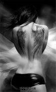 女性背部翅膀纹身