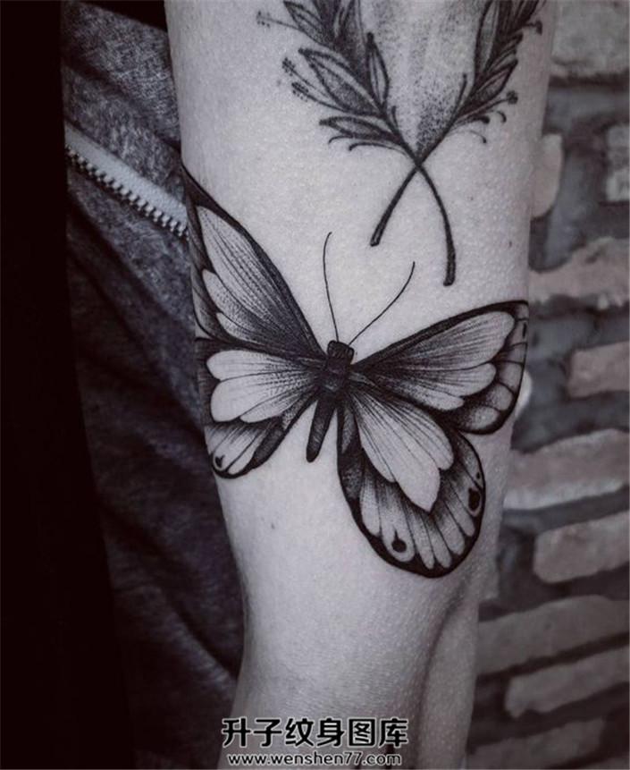 女生小臂上文艺范的蝴蝶纹身