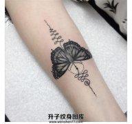 女生小臂黑灰色清新的蝴蝶纹身
