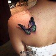 女生肩部的七彩蝴蝶纹身
