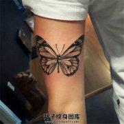 女生大臂后侧黑灰色蝴蝶纹身
