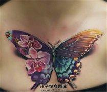 女性胸前的彩色花蝴蝶纹身