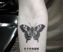 女性小臂内侧蝴蝶纹身