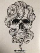 骷髅蛇纹身手稿