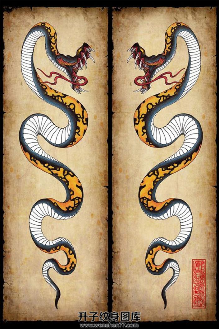 彩色传统蛇纹身手稿