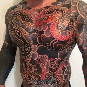 男性前胸腹部的传统蛇纹身遮盖纹身520