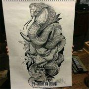 蛇与般若素材纹身手稿