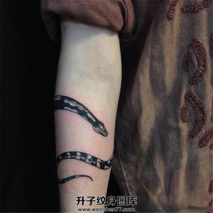 女性小臂缠绕的蛇纹身