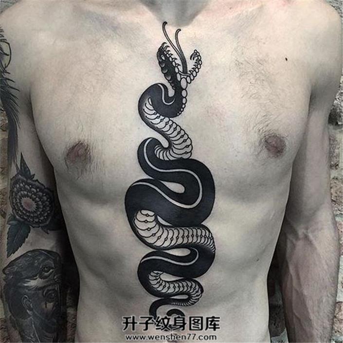 男性胸腹部的蛇纹身
