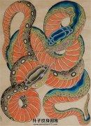 两条蛇纹身手稿