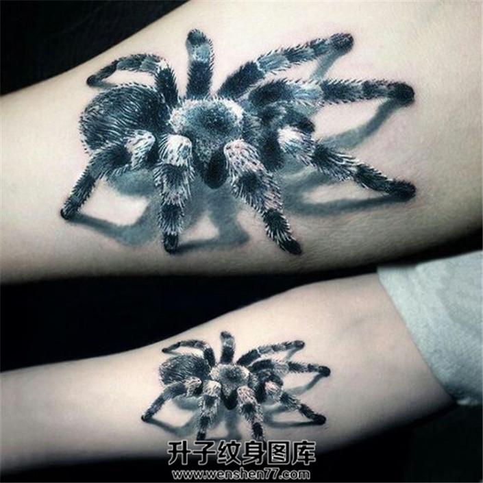 男性小臂立体感超真的蜘蛛纹身