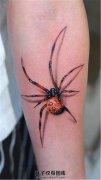 男性小臂逼真的蜘蛛