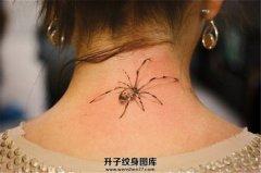 女性后颈写实蜘蛛纹身