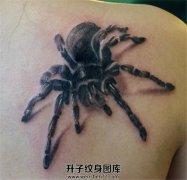 女性肩部蜘蛛纹身