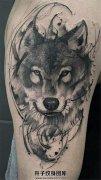 男性大臂水墨狼头纹身