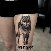 女生大腿纹狼也可以很性感