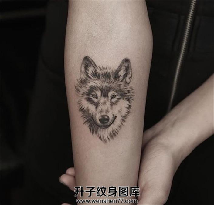 女性小臂内侧可爱的狼头纹身