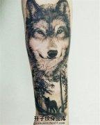 男性小臂丛林狼纹身
