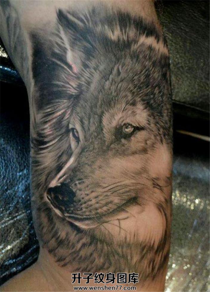 写实狼头or欧美school纹身你更喜欢哪个?