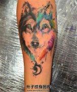 男性小臂泼墨狼头纹身