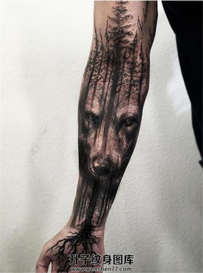 男性小臂树木与狼纹身图案