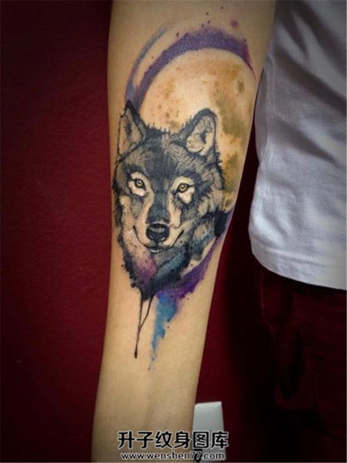 男性小臂泼墨狼头纹身图案大全